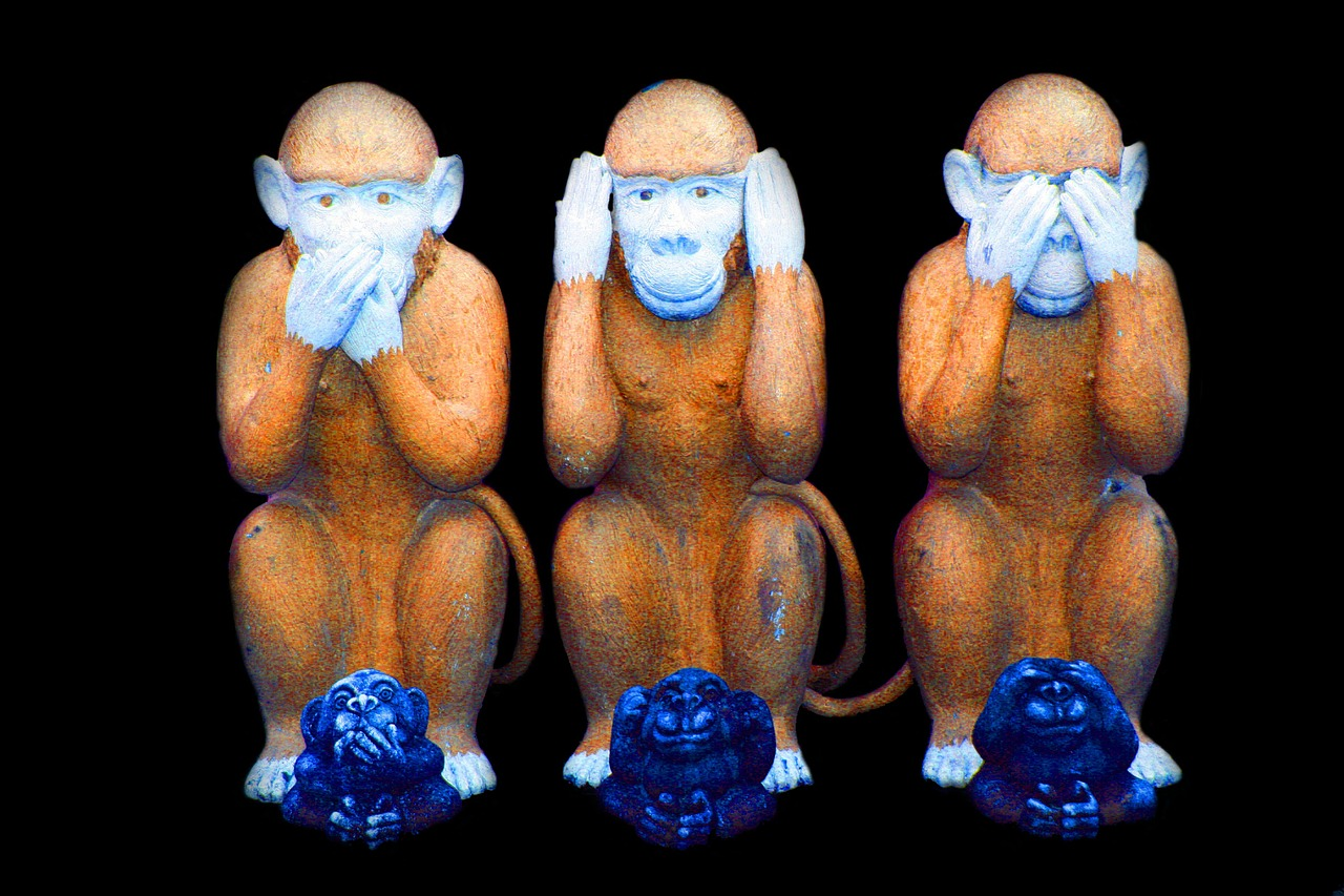 monkey-557586_1280.jpg